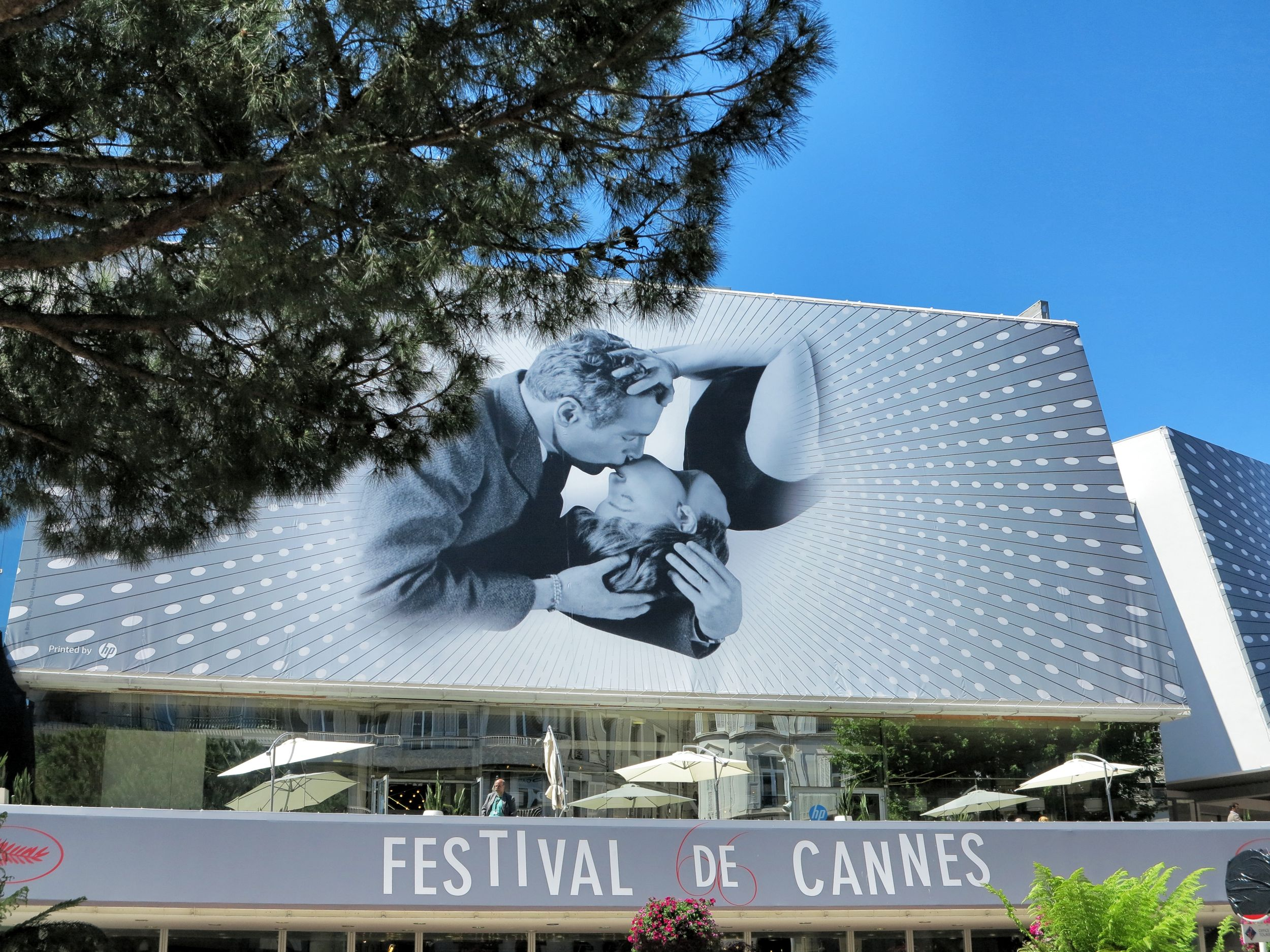 cannes, cannes film festival